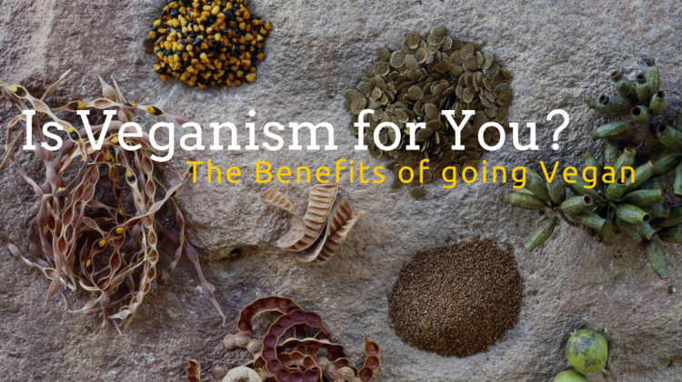 Is Vegan for YOU? The Benefits of Veganism