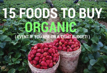 15 foods to buy organic even if you are on a tight budget